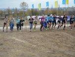 Відбувся чемпіонат України з кросу